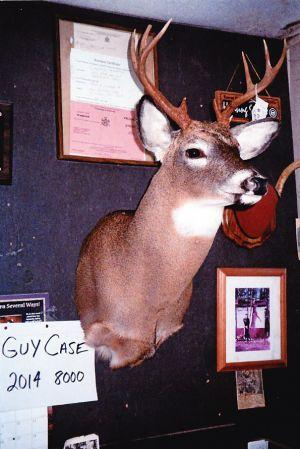 Guy Case 2014 8000